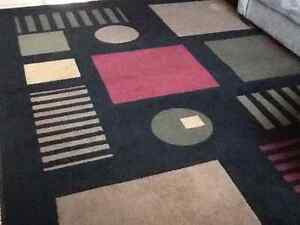 8ft x 10ft area rug