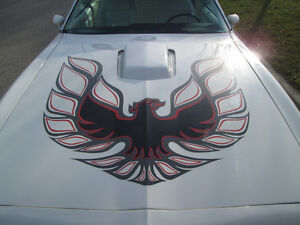 1978 Trans am - Bandit edition *near mint