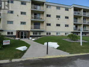 Beautiful 2 Bedroom Condo in crowsnest Pass