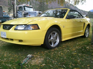 2002 Ford Mustang Convertible -Low Mileage - Summer Driven