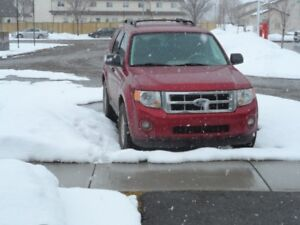 2008 Ford Escape yes Other