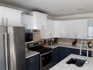 Ébénisterie d'armoires de cuisine et salle de bain bois mélamine