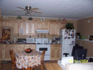 1 Bdr Canada St Incl Heat Hot Water Fridge Stove,Lawn Snow Care