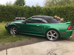 2000 Ford Mustang Mustang GT Coupé (2 portes)