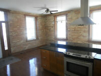 LARGE 1 BEDROOM APARTMENT IN HOUSE