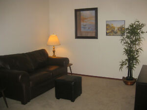 Furnished 1 BDRM suite, close to everything!