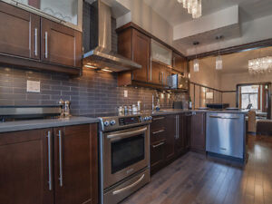 Stunning apartment steps from parc lafontaine