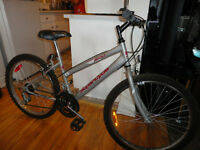 Affordable Youth Size Mountain Bike!
