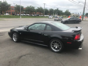MUSTANG GT 2004 SUPERCHARGED