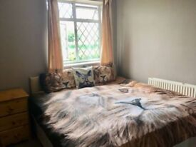 Nice and Light Room in Putney Available NOW