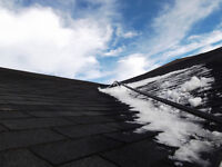 ****ROOF TOP SNOW REMOVAL****
