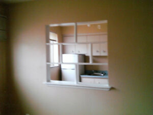 1 bedroom apartment on east mountain