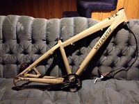 Specialized P1 frame