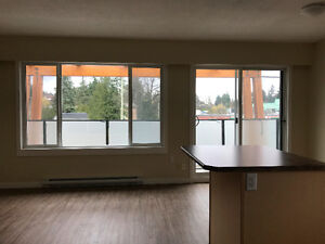 Brand New 2 Bedroom/1 bath Bowen Road