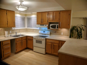 Renovation sale all must go (kitchen)