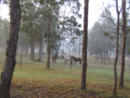 Paradise Found at Paddys Flat, Northern NSW Tabulam Tenterfield Area Preview