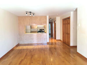 Nice 4 ½ apartment close to Berri UQAM to rent **Available now**