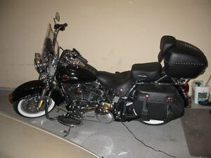 HARLEY SOFTAIL FOR SALE