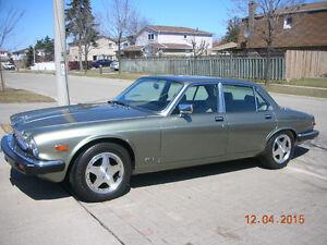Jaguar for sale - MINT