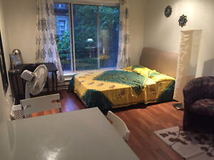Private Apartment in near Mcgill for Sublet June 22-July 15