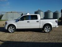 2011 SUPERCHARGED FORD LIMITED F-150 4X4 CREWCAB  Pickup Truck