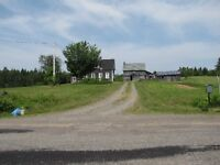 SALE PENDING House and 60 Acres 5 miles from Belleisle Ferry