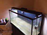 80 gallon fish tank stand and t5 lighting fixture only 200$