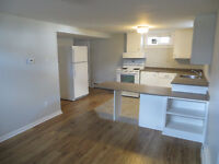 New reno 1BR Apt in dwntwn/hospital area-heat + lights included