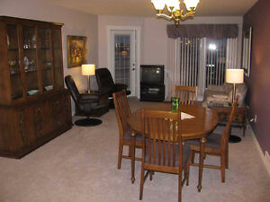 Furnished Executive Condo - All Utilities Included