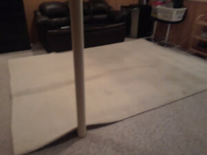 sheep wool area rug. 12 ft by 9.