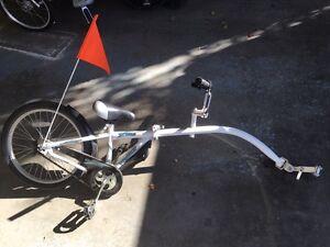 WeeRide trail a bike