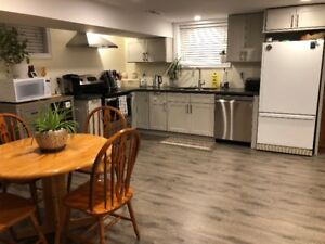 Stunning Newly Renovated, Multilevel 2 Bdrm On Hamilton Mtn