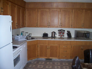Beautiful fully furnished suite with garage -utilities included! Edmonton Edmonton Area image 5