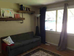 Looking for roommate.