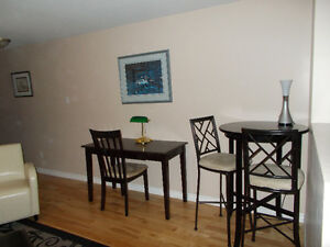 fully furnished and equipped one bedroom above ground apartment St. John's Newfoundland image 6