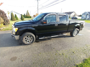 2009 Ford F-150 XLT Camionnette bas millage