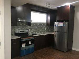 Newly Developed Basement for rent in Savanna Saddleridge NE