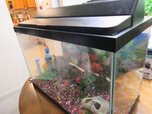 20 Gallons Fish Tank in excellent condition.