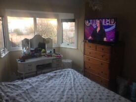 A nice size double room