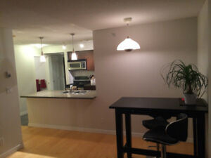 Nov1-Apr30 1BR, Central Modern Furnished. Views! Utilities incl