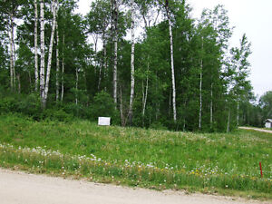 Lot 1 Wilson Cres., Big River