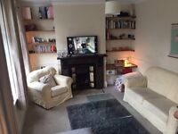 Double room available, Clapham 21st Dec- 14th Jan