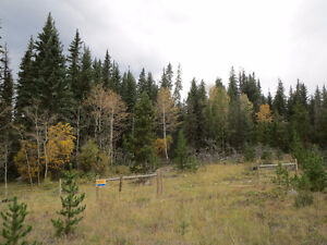 35 acre land in Clinton BC on Hwy 97 and Chasm Sawmill