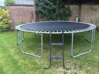 12ft Trampoline free to good home - buyer collect