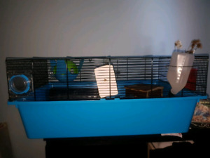 Small rat cage