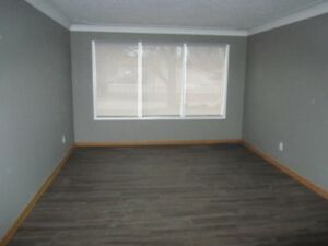 Student Rental - Close to Pen Centre - Fully renovated house
