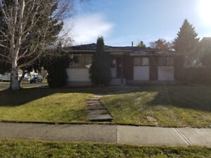 Newly renovated house in the perfect area!