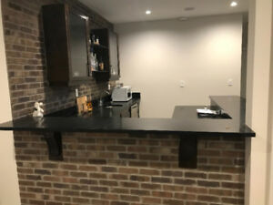 Brand new 1 Bedroom basement for rent