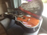 Takamine EG544CK guitar and case for sale.