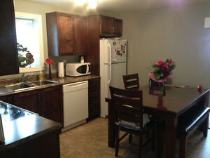 2 bedroom basement apartment in Paradise available Jan 1st